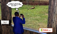 Le Président de la République Macky Sall visitant le Parc national de Nairobi, au Kenya