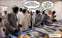 Le président Macky Sall inaugure l`usine d'exportation de produits de la mer