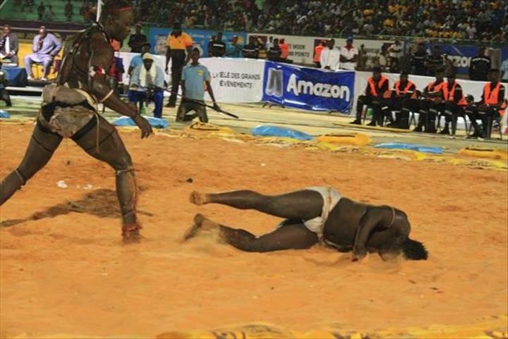 Lutte s n galaise sitteu met zoss ko adakar photos for Interieur sport lutte senegalaise